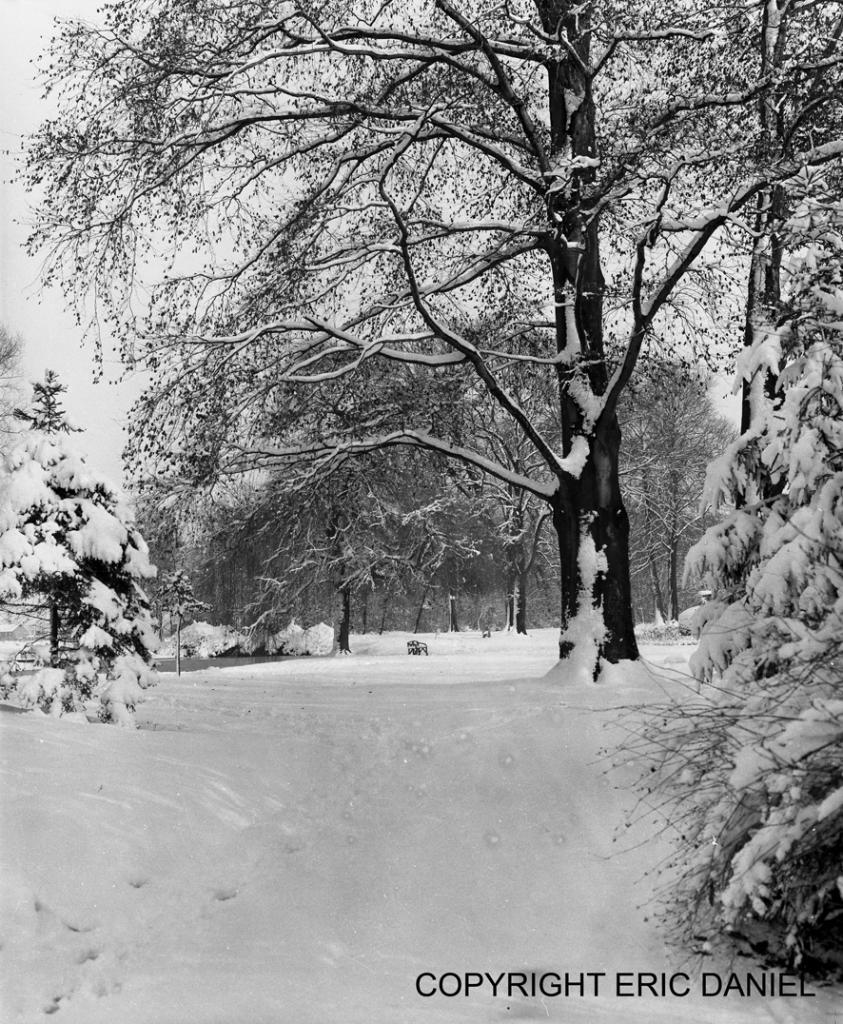 le parc communale sous la neige 16